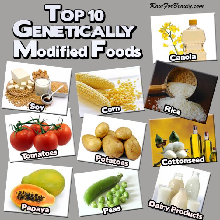 top 10 gmo foods