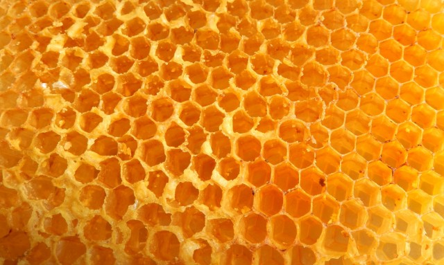 perfect honeycomb