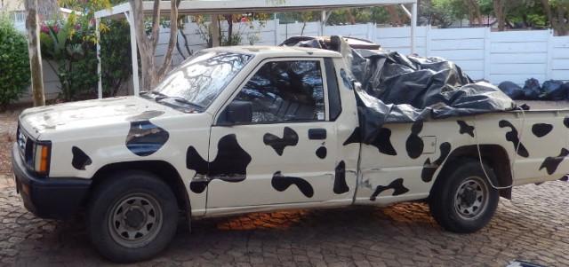 cow bakkie